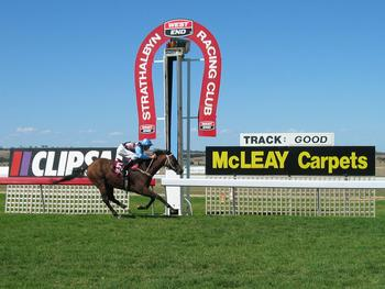 Strathalbyn Locality List  Image . This photo sponsored by Horse Trainers Category.